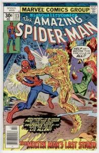 SPIDER-MAN #173, VF, Andru, Molten Man, Amazing, 1963, more ASM in store