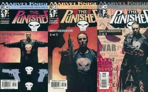 PUNISHER (2001) 20-22  The Brotherhood 3-part story