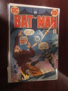 Batman #248 - 4.0 - 1973