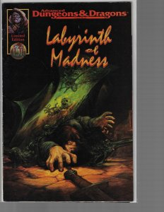 Advanced Dungeons & Dragons: Labyrinth of Madness (TSR, 1996)