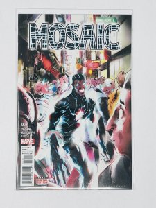 Mosaic #2 (2017)