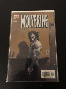 Wolverine (BR) #181 (2002)