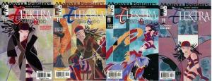 ELEKTRA GLIMPSE & ECHO (2002) 1-4  the COMPLETE series!
