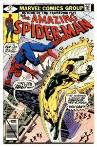 AMAZING SPIDER-MAN #193-comic book-Bronze Age-High Grade VF/NM