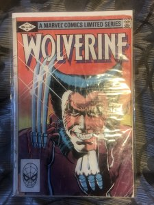 Wolverine 1 first solo book