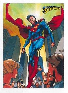 2013 Superman (Cryptozoic) card set #1-62 complete NM/MT