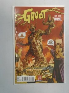 Groot #1 D Variant cover (2015)