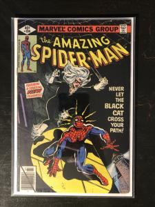 Amazing Spider-Man #194 - 1st App. Of Black Cat (Felicia Hardy)