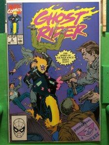 Ghost Rider #2 1990 series