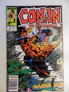 CONAN THE BARBARIAN # 213