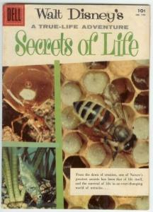 SECRETS OF LIFE (1956 DELL) F.C. 749 VG PHOTO COVER COMICS BOOK