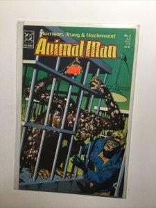 Animal Man 3 Near Mint Nm Dc Comics