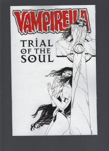 Vampirella Trial Of The Soul Cover B