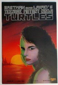 Teenage Mutant Ninja Turtles #28 (Vol. 1)