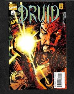 Druid #1 (1995)