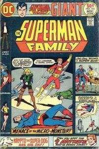Superman Family #173, Fine (Stock photo)
