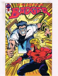 Badger #45 VF First Comics Comic Book Baron DE25