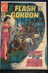 Flash Gordon #13 (1969)