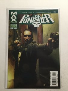 Punisher 12 Near Mint- Nm- 9.2 Max Comics Marvel