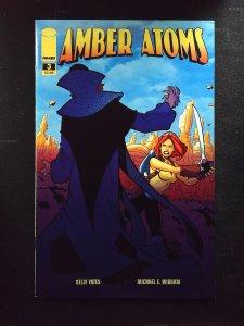 Amber Atoms #3 (2009)
