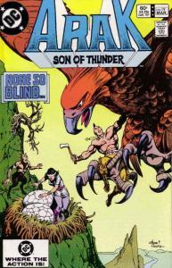Arak Son of Thunder #19 FN; DC | save on shipping - details inside