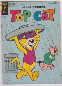 Top Cat #10