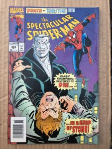 The Spectacular Spider-Man #205 (1993)