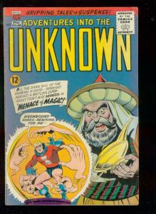 ADVENTURES INTO THE UNKNOWN #161 1965-NEMESIS-MAGICIAN FN