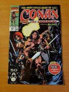 Conan The Barbarian #244 Direct Market Edition ~ NEAR MINT NM ~ 1991 Marvel