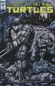 Teenage Mutant Ninja Turtles (5th Series) #54A VF/NM; IDW | save on shipping - d
