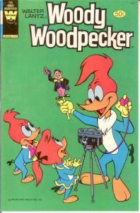WOODY WOODPECKER 195 VF 1981 COMICS BOOK