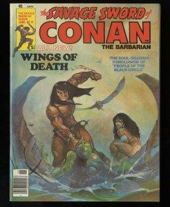 Savage Sword of Conan #19 NM+ 9.6