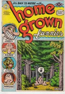 Home Grown Funnies #1 (Jan-71) FN High-Grade Whiteman, Big Foot, Mary Jane, A...