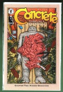 Concrete: Think Like a Mountain #2 (1996)