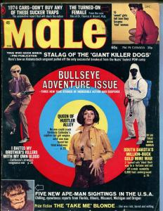 Male 12/1973-Atlas-pulp fiction-Pollen-Norem-cheesecake-Bullseye Adventure-VG+