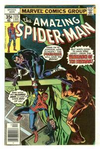 Amazing Spiderman 175   Punisher
