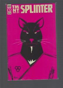 TMNT: Best of Splinter #1