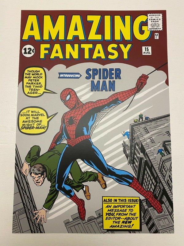 Amazing Fantasy #15 Spider-Man Marvel Comics poster by Steve Ditko