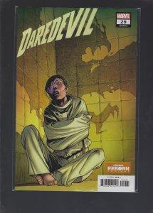 Daredevil #29 Variant