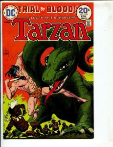 Tarzan-#228-1974-DC-BRONZE-AGE-Joe Kubert-NM-