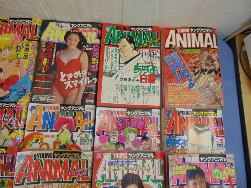 19 Young Animal Japanese Manga Comic Books Anthology Magazines Berserk Seinen +