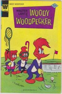 Woody Woodpecker #157