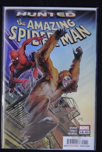 The Amazing Spider-Man 16 HU and 18HU, Hunted