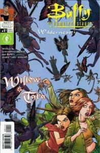 Buffy the Vampire Slayer: Willow And Tara—Wilderness #1A VF/NM; Dark Horse | sav