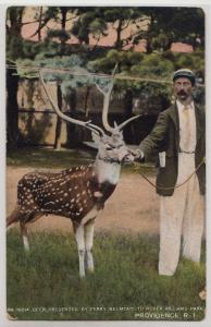 India Deer, Roger Williams Park, Providence RI
