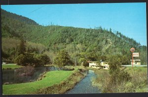 Oregon ~ Humbug Mountain Lodge Hwy 101 South PORT ORFORD - Chrome 1950s-1970s