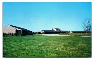 1950s/60s Riverview Courts, Trappe, MD Postcard *6S(3)22
