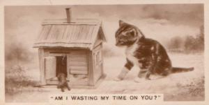 Cat & Mouse In Dolls House German Old Real Photo Cigarette Card