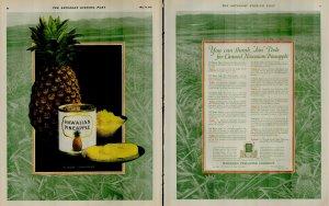 1927 Hawaiian Pineapple Thank Jim Dole Vintage Print Ad 3937
