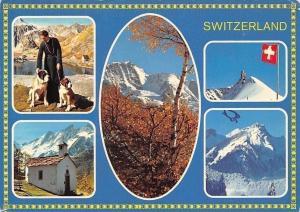 Switzerland multiviews Kapelle, Chapel Mountains Dogs Panorama